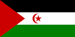Flag of western-sahara flag.