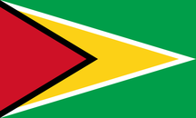 Flag of guyana flag.